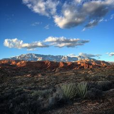 """#winter #hike #red #cliffs #desert #reserve #cottonwood #hills #trail #utah #sandstone #hoodoos #pine #valley #mountains #snow #igsouthwest #iphoneography #iphone6sphotography #sunset by jcook Follow """"DIY iPhone 6/ 6S Cases/ Covers/ Sleeves"""" board on @cutephonecases http://ift.tt/1OCqEuZ to see more ways to add text add #Photography #Photographer #Photo #Photos #Picture #Pictures #Camera #Only #Pic #Pics to #iPhone6S Case/ Cover/ Sleeve"""