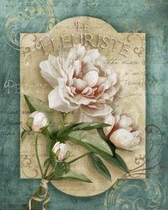 Le Fleuriste. ..♥..Nims..♥