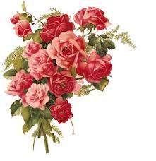 Resultado de imagen para flores vintage lirios png