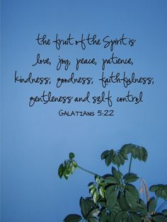 fruit of the spirit ~ Galatians 5:22