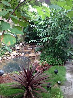 Ponseti Landscaping   Old Metairie, Lakeview And Uptown New Orleans Garden  Landscaping Design And Maintenance