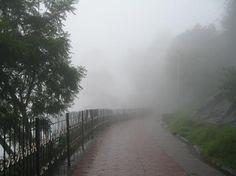 Coakers Walk in rain