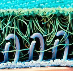 microscopic view of Velcro interlocking