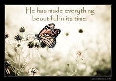 God is making a beautiful masterpiece out of your life...be patient, and very soon you will be so amazed