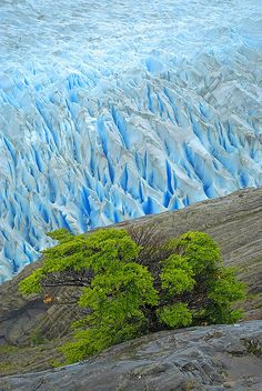 Grey Glaciar, Torres del Paine National Park, Patagonia, Chile