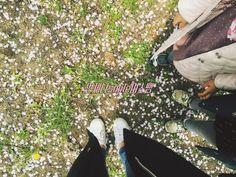 미술활동::벚꽃꾸미기/만들기/봄꽃만들기/벚꽃활동모음 : 네이버 블로그