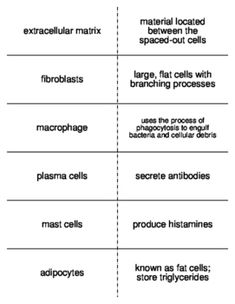 Science Roots :: Vocabulary for High School Biology