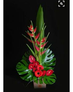 Cool tropical arrangement with gerbera daisies, anthurium, and heliconia Contemporary Flower Arrangements, Creative Flower Arrangements, Tropical Floral Arrangements, Church Flower Arrangements, Beautiful Flower Arrangements, Flower Centerpieces, Flower Decorations, Beautiful Flowers, Altar Decorations