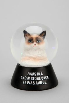 Grumpy Cat Snow Globe | Keep.com