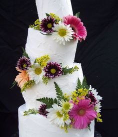 Colorful Cakes with Daisies Colorful Cakes, Daisy, Pastel, Things To Come, Desserts, Food, Tailgate Desserts, Cake, Deserts