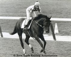 Damascus won the 1967 Travers Stakes at Saratoga by 22 lengths, and was Horse of the Year in 1967.