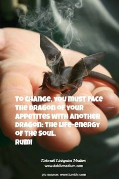 """""""To change, you must face the dragon of your appetites with another dragon: the Life-Energy of the Soul."""" ~Rumi"""