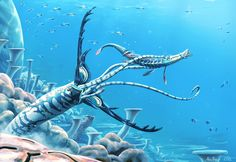 Reef Antlerworm by Abiogenisis on DeviantArt