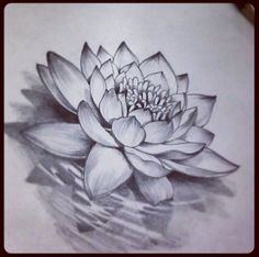 like a lotus flower, she is planted in the mud, and yet, she blooms.like a lotus flower, s Form Tattoo, Shape Tattoo, Diy Tattoo, Tattoo Fonts, Tattoo Ideas, Script Tattoos, Fake Tattoos, Lily Tattoo Design, Flower Tattoo Designs