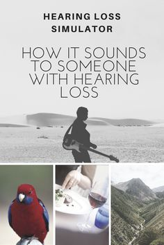 What does a bird sound like to someone with hearing loss? What about a guitar or music or voices in a busy restaurant? Listen with this hearing loss simulator