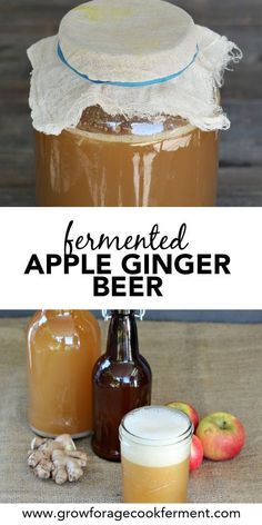 Fermented Apple Ginger Beer (Made with a Ginger Bug) - - When apples are in season make this naturally fermented apple ginger beer. It's made with a ginger bug and is super fizzy and tasty! Pumpkin Spiced Latte Recipe, Pumpkin Spice Latte, Yummy Drinks, Healthy Drinks, Ginger Bug, Apple Cider Sangria, Fermentation Recipes, Fall Drinks, Beer Recipes