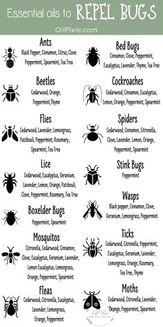 Stop using toxic bug spray and make your own all-natural effective bug spray with essential oils