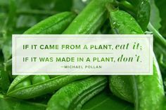 Sensible advice from Michael Pollan. When it comes to healthy eating, the closer to nature the better! Health And Nutrition, Health Tips, Health And Wellness, Health Fitness, Fitness Diet, Health Care, Nutrition Quotes, Vegan Nutrition, Holistic Nutrition