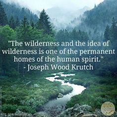 week 5  The wilderness and the idea of the wilderness is one of the permanent homes of the human spirit. - Joseph Wood Krutch