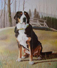Berner Sennenhund Ölbild 80x70 cm