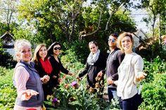 Victory Garden Initiative - Employment & Internships