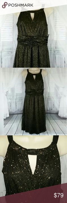 Holiday Cocktail Party Dress New with Tag Brand New with Tag perfect very shimmery black and gold holiday party dress for your office Christmas party, holiday photos, or any elegant event you desire. Retail Price $179  comes in women's size 8  Reasonable offers welcomed Dresses Midi