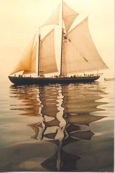 something pretty special about a vintage sailing yacht.