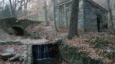 Rock Creek - Washington DC