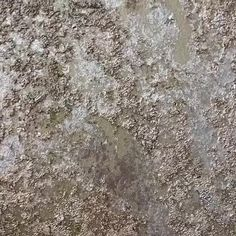 Putting the 'wow' in wow factor - what a gorgeous finish! This sample was created to mimic wallpaper. Grey And Gold Wallpaper, Textured Wallpaper, Textured Walls, Gold Painted Walls, Metallic Paint Walls, Painting Concrete, Faux Painting, Faux Finishes For Walls, Wall Finishes
