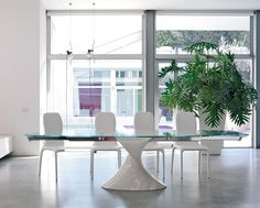 SHANGHAI, Tavolo piano in vetro