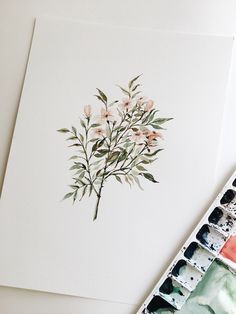 Delicate Floral Branch Watercolor Painting by botanical artist Shealeen Louise - 9 x 12 - ORIGINAL