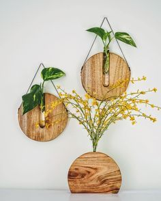"""Fabiana Loschi on Instagram: """"These  beauty's will be  the last decor pieces to leave our showroom  this year! 👋🏼 Already thinking what would be our new designs for 2019!"""" Hanging Plants, Indoor Plants, Play Wood, Staircase Wall Decor, Wood Vase, Contemporary Interior Design, Plant Decor, Natural Materials, Wood Projects"""