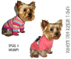 1764 Raglan Dog T-Shirt Pattern for the Little by SofiandFriends