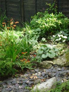 Woodland Garden by Fenton Roberts Garden Design