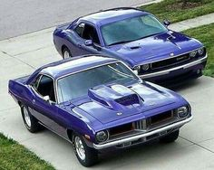 Plymouth Barracuda & Dodge Challenger