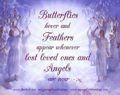 Butterflies hover and feathers appear whenever lost loved ones and angels are near.