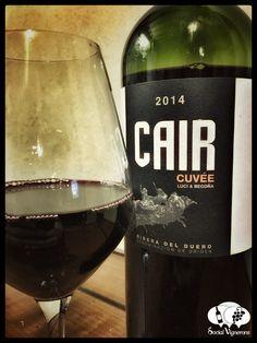 2014-dominio-de-cair-cuvee-luci-begona-ribera-del-duero-spain-front-label-wine-review-social-vignerons