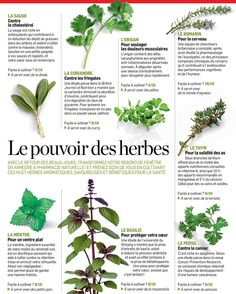 Fitness friandises Health And Nutrition, Health Fitness, Sixpack Training, Garden Care, Medicinal Plants, Plant Care, Horticulture, Beauty Care, Healthy Life