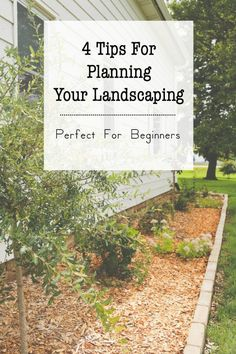 """Tips for planning landscaping, perfect for beginners and those with a """"black thumb""""."""