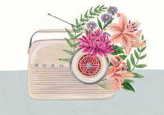 Charlotte Day | Botanical Illustrators | Central Illustration Agency