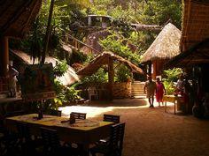 Jungle Lunch _ Puerto Vallarta Mismaloya