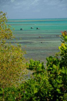 Vista de Bitingui, uma das praias de Japaratinga, na Costa dos Corais, norte de Alagoas, Brasil.  Fotografia: Eduardo Vessoni / UOL.