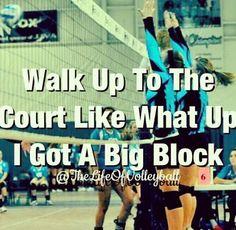 Volleyball :)