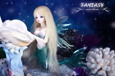 - Siren - Chris Limited(60sets) *It takes 80~100 workings days to produce event order.^^. Lotus/Chris/Celia/Sibyl have different face moulde, Lotus, Chris, Celia  Sibyl have different fish part set. Release Date: April 1st, 2014 Event period(2014/04/01~~2014/04/30)