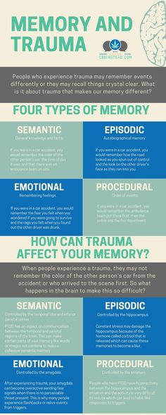 Does Trauma Change Your Memories? Did you know that the stress that you experience during a trauma can cause you to have memory issues? Did you know that the stress that you experience during a trauma can cause you to have memory issues? Trauma Therapy, Therapy Tools, Types Of Memory, Complex Ptsd, Mental Training, Psychology Facts, Memory Psychology, Health Psychology, Educational Psychology