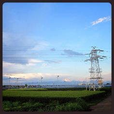 白い雲と青い空と緑の茶畑と鉄塔。
