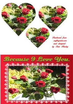 A pretty photo of a bunch of red roses. This card has, because I love you on it, but there are more of the same card, with different words on them.