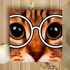 """CAT ME IF YOU CAN on Instagram: """"Can't take my eyes off you 🤓 . . . . . #catportrait #catofday #catcatwalk #catoftheworld #catpicoftheday #cutecatsofinstagram #cutecatclub…"""" Cat Walk, My Eyes, Cats Of Instagram, Design Art, Canning, Creative, Cute, Walkway, Kawaii"""