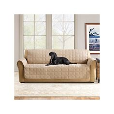 Kohl S Pet Sofa Cover White Small Best 25+ Suede Ideas On Pinterest | Living Room ...