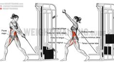 Cable down-up twist exercise Cable Machine Workout, Back Cable Workout, Muscle Fitness, Fitness Tips, Gluteus Medius, Cable Abs, Inner Thight Workout, Cream Of Celery, Oblique Workout